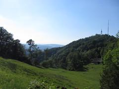 Uetliberg Landscape