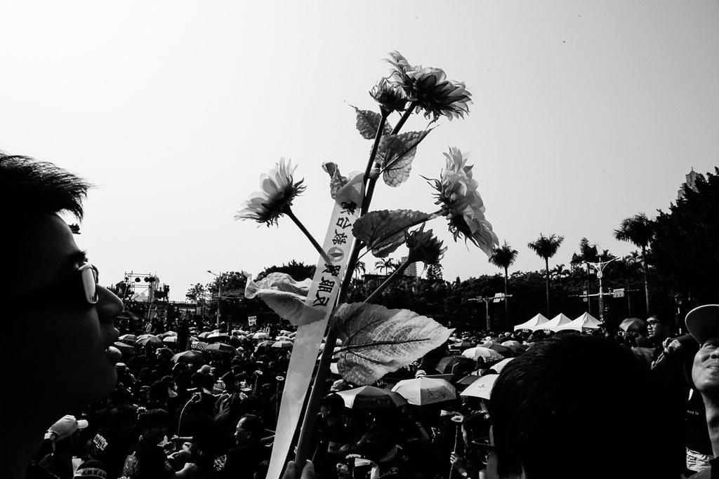 330 反服貿大遊行