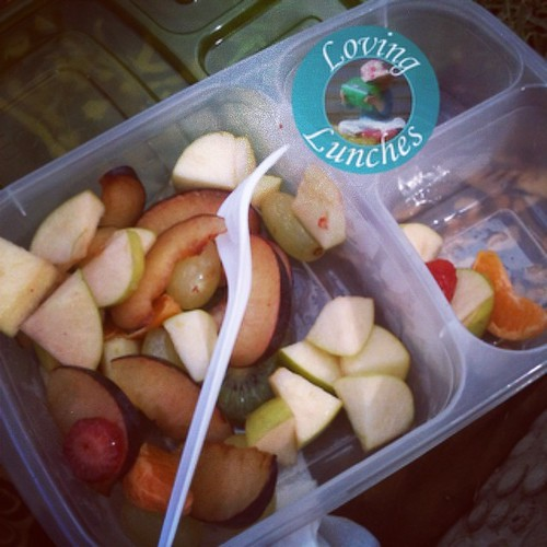 Loving our first outing with our @easylunchboxes … ok so it's just leftover fruit salad at the park, but yay!