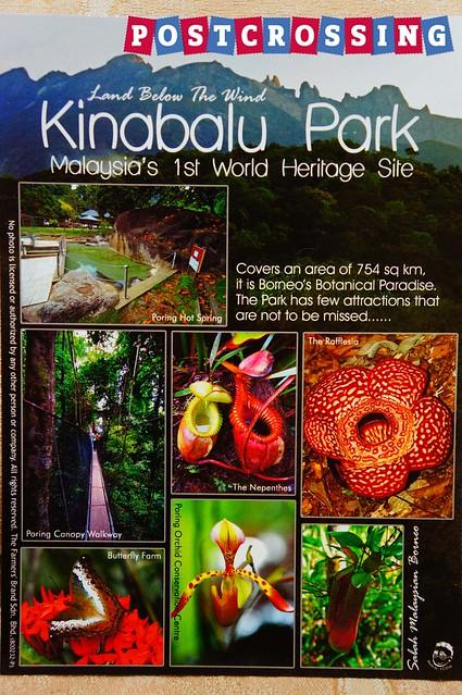 Sabah - Kinabalu Park