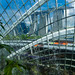 Cloud Forest Bio Dome