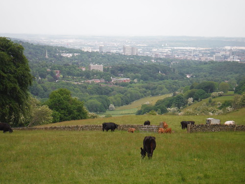 Sheffield from Viewpoint on Greenhouse Lane