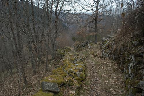 pastorale hoek tijdens afdaling