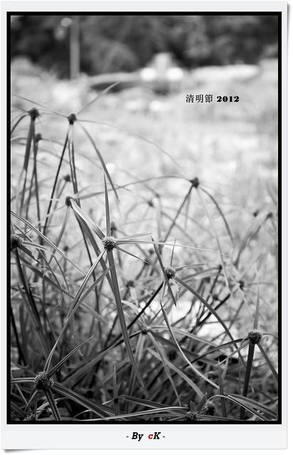 IMAGE: http://farm8.staticflickr.com/7100/6877500420_d1023af816_z.jpg