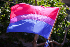 A Bi Pride flag ripples in the breeze. There is a wide pink strip on top, a wide blue strip on the bottom, and a thin purple strip in the middle. Trees and sunlight are visible in the background.