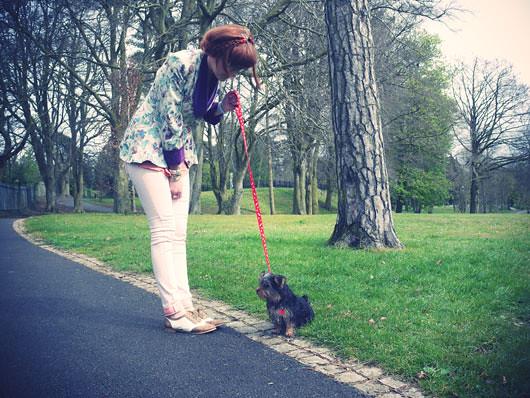puppy-n-park5