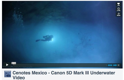 Canon 5D Mark III -- Underwater Video Samples