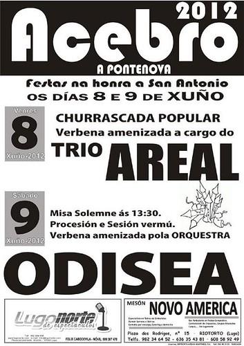 A Pontenova 2012 - Festas de Santo Antón en Acebro - cartel