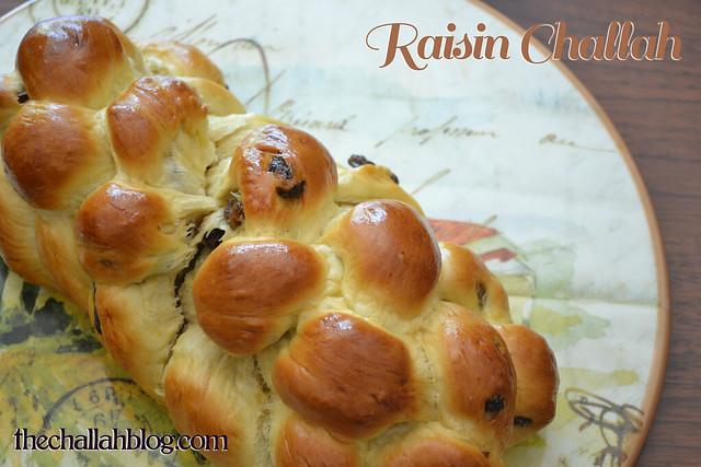 raisin_011