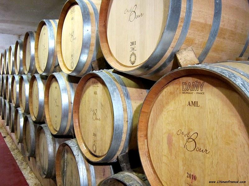cave+futs+vins