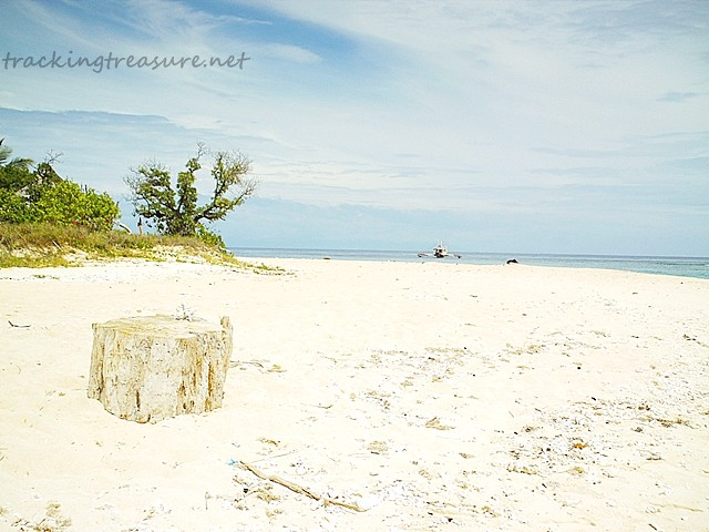 Apo Reef white sand