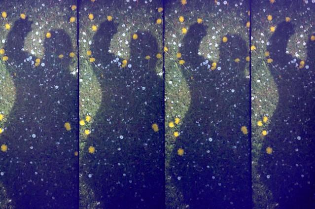Lomography Super Sampler fine Lomography 35mm 100 ASA color film Developed with TETENAL C41 colortec