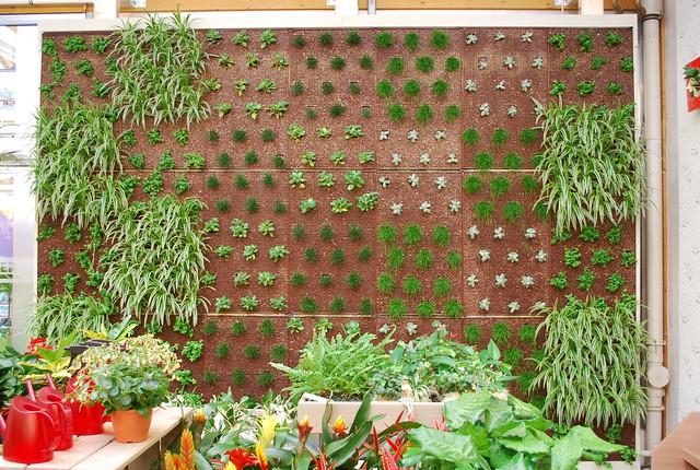 vertical gardening vertikal garten flickr photo sharing. Black Bedroom Furniture Sets. Home Design Ideas