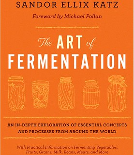 The Art of Fermentation #2 Cover