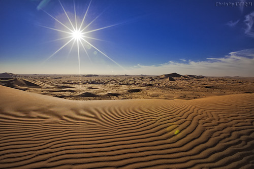The Desert Under The Sun by TARIQ-M