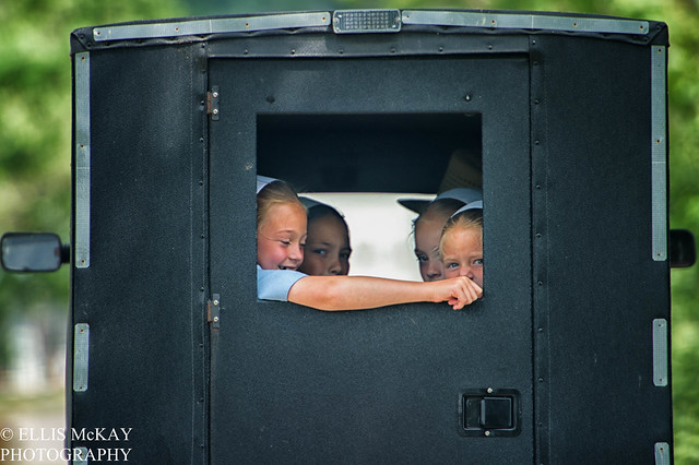 OhioAmish_  June 02, 2012_211