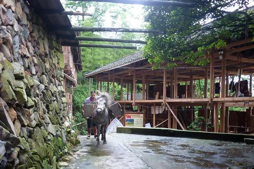 C-Guangxi-Dazhai-Descente (16)