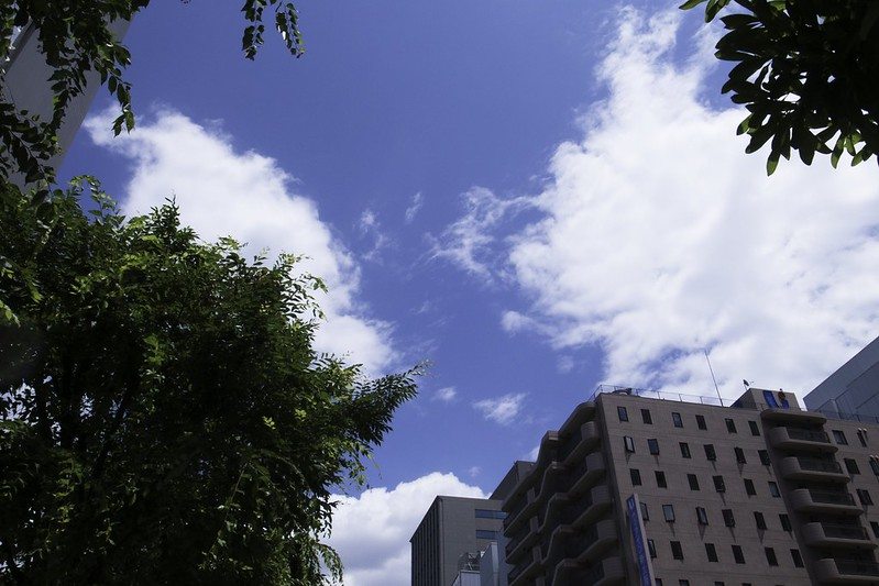 2012-06-06の空