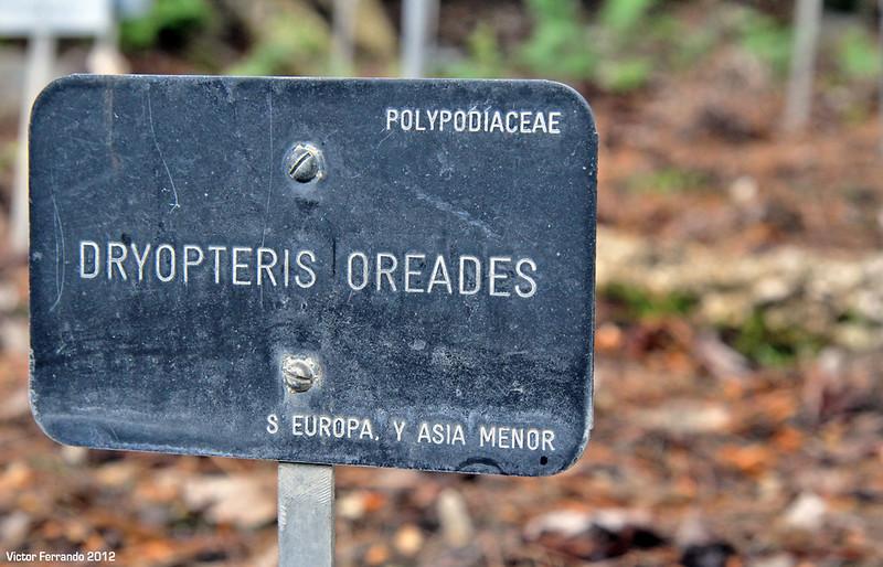 Madrid - Real Jardín Botánico