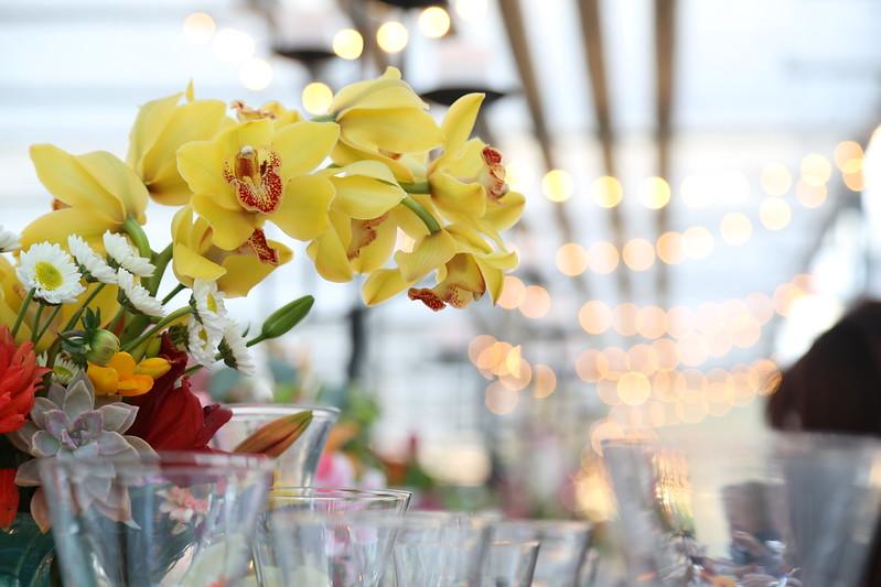 Certification Matters American Grown Flowers