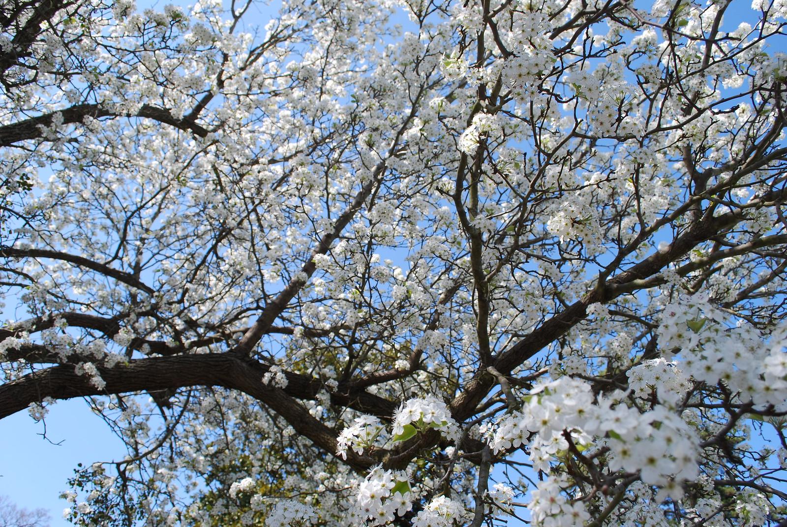 Blog_2014 1105