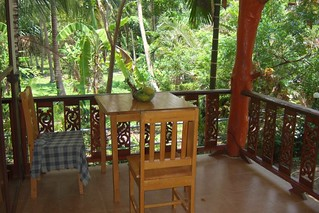 Veranda with jungle view