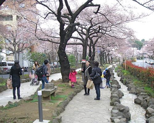 Koishikawa Botanical Gardens