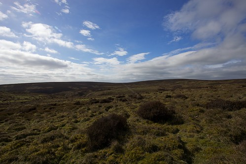 High Moorland of the Mynd