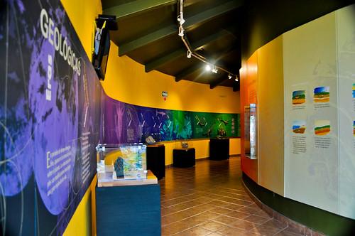 Museo de Paleontología (04)