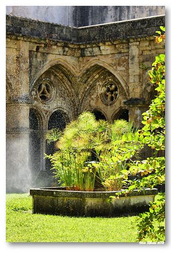 Jardim do claustro da Sé Velha #2 by VRfoto