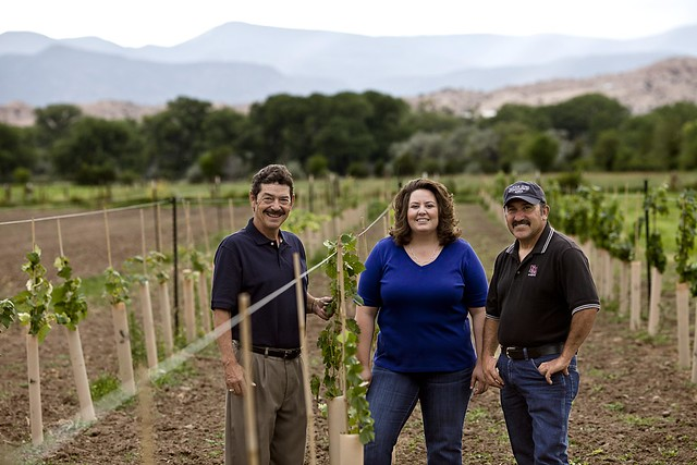 The Northern New Mexico Micro Grape Growers Association (NMSBA) Entrepreneurial Networking program is helping Lucia Sanchez (C), Tim Martinez (R), and Robert Naranjo put small parcels of land back into production in Rio Arriba County.