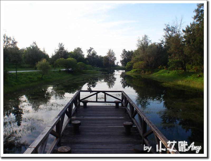 台東黑森林琵琶湖P7242403