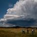 Storm Photographers_4968.jpg
