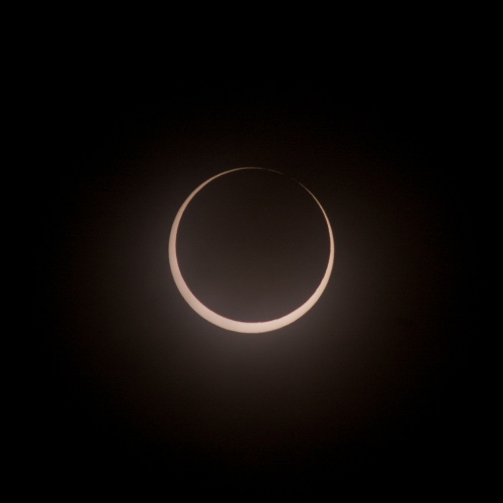 eclipse of community thesis The heroic tenor voice ascended for many of the same reasons that caused the eclipse of the countertenor voice earlier commentators characterized individual countertenor voices as sweet 21 or clear, full, melodious, 22 while later ones called the 20 giles, 75.