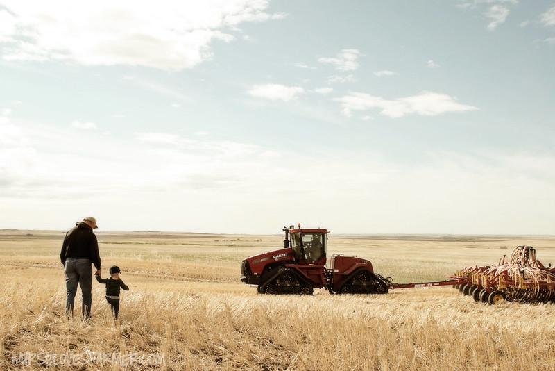 Seeding 2012
