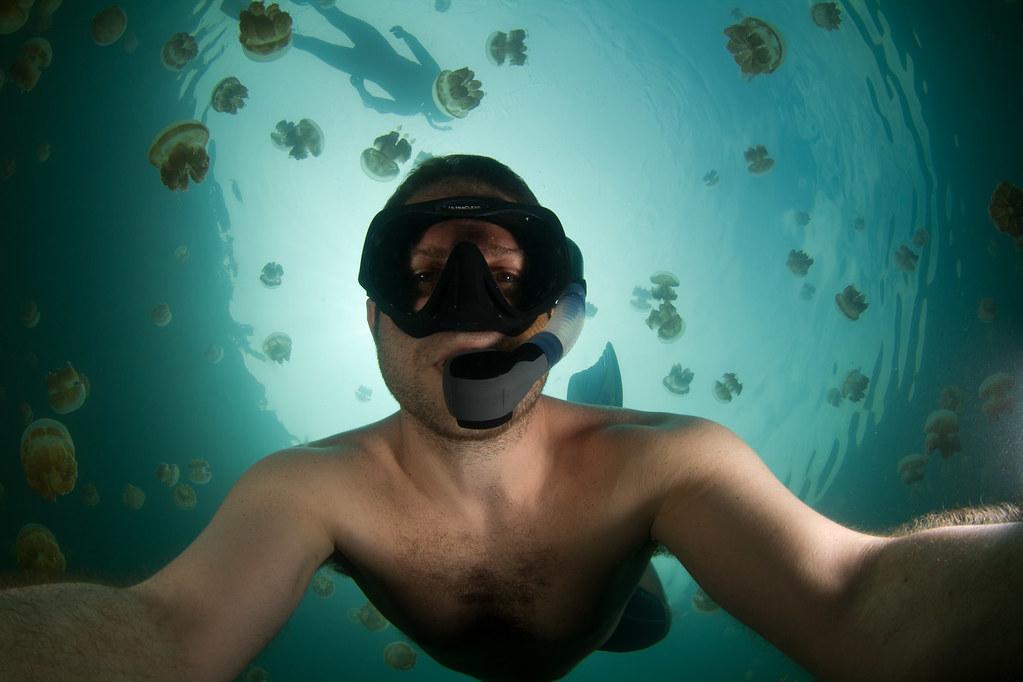 ジェリーフィッシュレイクでクラゲとともに泳ぐ人