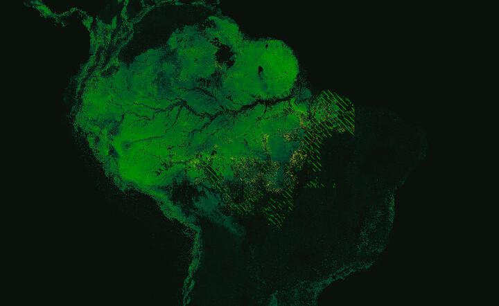 En rayé, les zones de déforestation. Sans compter que certaines espèces végétales sont en voie de disparition à cause de la surexploitation, comme le bois de rose.