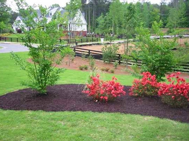 Yard Landscaping Mulch : Front yard berm landscaping flickr photo sharing
