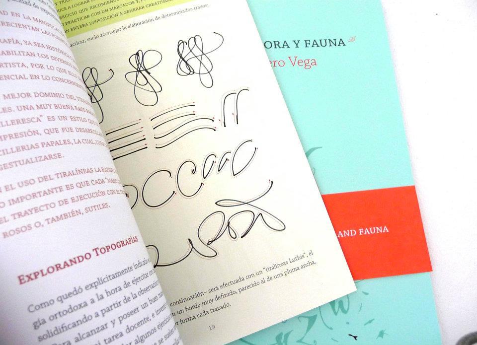 Colecci N Visual De Caligraf A New Book Calligraphy