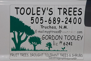 Tooley's Trees_7806