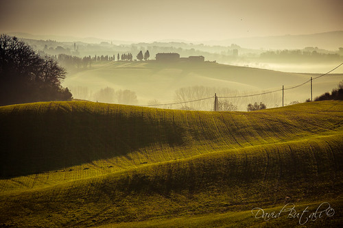 Alba in Toscana by David Butali