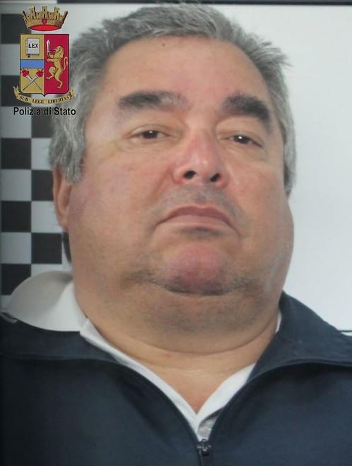 Angelo Pernicone