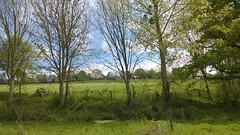 37. Maisoncelles-Pelvey - Photo of Aunay-sur-Odon