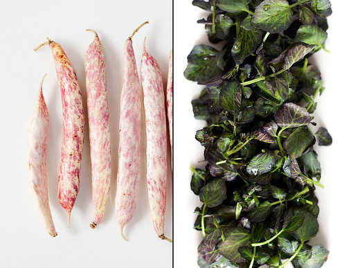 Cranberry Beans & Purple Watercress