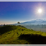 03 Kabut Gunung Sari Nongkojajar
