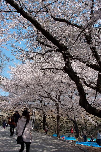 2012-kyushu-167