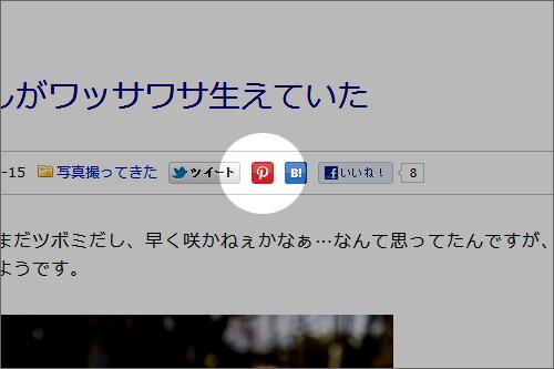 ブログに設置したPinterestボ
