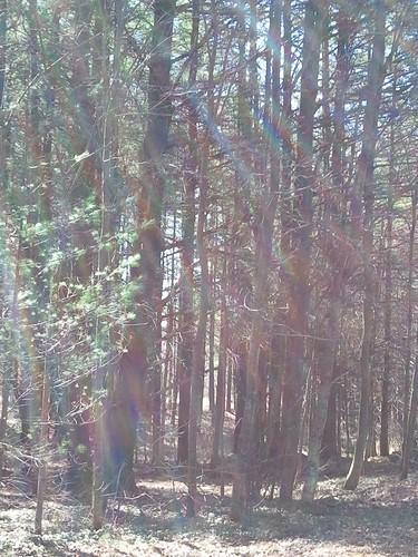 ontario ottawa beantownranch discoveringcanada livingstonefamily