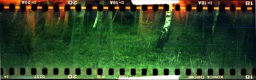 Edinburgh, Kodak No.2-A - Konica R100
