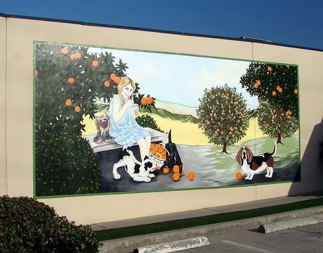 Downtown redlands ca murals 6 3 12h flickr photo for 6 blocks from downtown mural